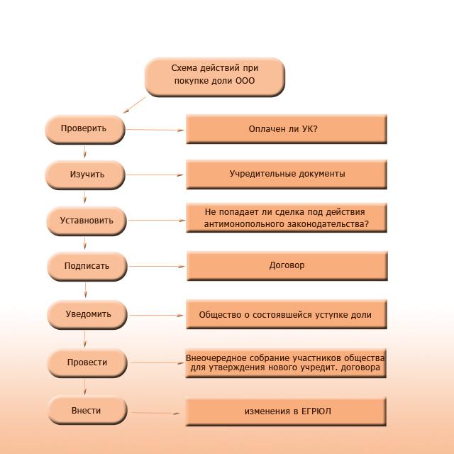 Схема действий при покупке доли в ооо